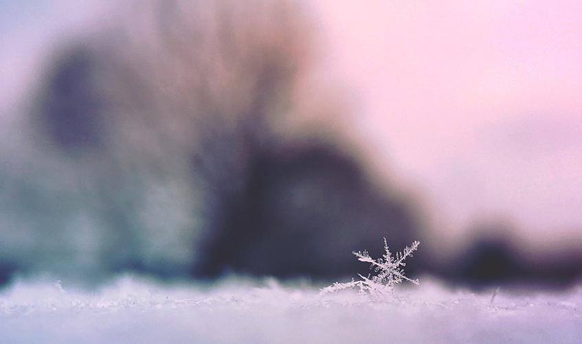 Snowflake, Aaron Burden