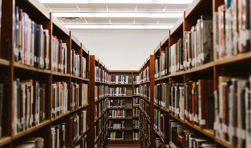 Bookshelves | Priscilla Westra